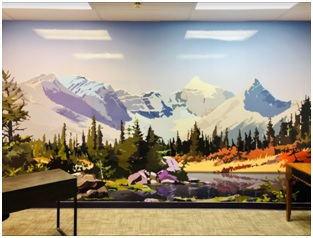 thumb-What is a Wall Graphic, and How Can it Help My Business?